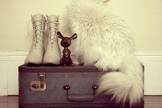 desiretoinspire.net: Flickr finds - suitcases