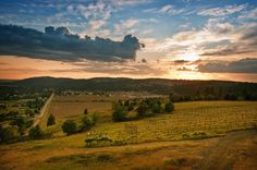 The Spokane office is spending an evening together at Arbor Crest Winery in Sept - beautiful view with great company!