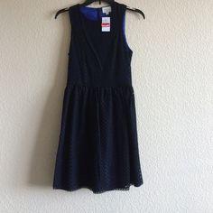 High neck black and blue dress Knee length dress. Black eyelet type overlay on a bright blue. nWT Everly Dresses