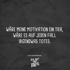 If my motivation were an animal, it would definitely be something Wäre meine Motivation ein Tier, wäre es auf jeden Fall irgendwas totes. – VISUAL STATEMENTS® If my motivation were an animal, it would definitely be something dead. Funny Photos Of People, Fall Memes, Visual Statements, Work Quotes, Work Humor, Life Humor, True Words, Decir No, Quotations