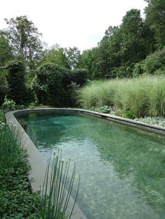 Natural pool in gree