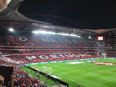 (*) Benfica - Busca do Twitter