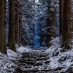 【5jjza80】さんのInstagramをピンしています。 《小菅神社奥社参道 The sacred way to the Kosuge shrine #自然 #風景 #景色 #森 #雪 #参道 #修験道 #naturephotography #naturelover #instanature #instanaturephotography #instanaturelover #landscape #landscapelovers #landscapes #landscapephotography #landscape_lovers #landscape_captures #scenery #sceneryshots #sceneryshot #sceneryporn #scenerylovers #scenery_lovers #forest #forestlover #snow #snowy #sacredway #shugendo》