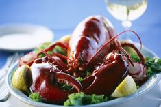 Top 10 Surprising Health Benefits of Lobster published in Pouted Online Magazine Health & Nutrition - Lobster in Diet  When speaking of food fit for a king, there is very little chance... -   -  #Healthyfood #lobster #seafood #pouted #fashionmagazine #poutedlifestylemagazine #trends - Get More at: https://www.pouted.com/top-10-surprising-health-benefits-of-lobster/