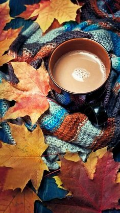 28 Breath-Taking and Most Beautiful Fall Wallpaper for Your iPhone
