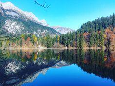 Tovel!  #falchettolovers #valdinona4zampe #montagna #trentinodavivere #colors. #foliage #autumn #trekkingvirtuale