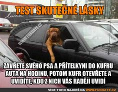Test skutečné lásky Funny Memes, Jokes, Humor, Carpe Diem, David, Lol, Husky Jokes, Humour, Memes
