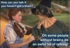 I know several people who don't use their brain before talking...