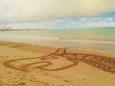 Dragão feito em praia de Manaíra PB.