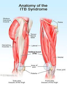 Iliotibial Band Syndrome is a common problem with runners and cyclists. The iliotibital band commonly known as the IT band is a band of tissue extending from the hip along the outside of the thigh and knee. Iliotibial Band Stretches, Iliotibial Band Syndrome, It Band Stretches, Hamstring Stretches, Band Exercises, Knee Exercises, Hip Pain, Knee Pain, Running Injuries