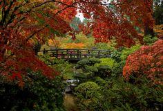 Autumn's Splendor......   by TLPhotography66 ~