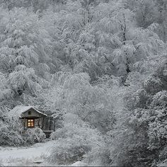 Little cottage in the wintry forest.