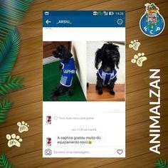 A linda #Saphira já tem a sua t-shirt oficial do @FCPorto.  Também quer o seu amigo de quatro patas torça a valer pelo seu clube? Envie-nos uma mensagem privada ou um e-mail para info@animalzan.com e encomende já a t-shirt oficial do #FCPorto.  #Animalzan www.animalzan.com  #AZClubPetLine #FCPorto # # # #EstásCãovocado #EstãoCãovocados #Porto #FCP #FutebolClubeDoPorto #SomosPorto #SemIgual #EstádioDoDragão #DragonStadium #Estádio #Stadium #Futebol #Football #Soccer #Cão #Cães #Dog #Dogs #K9…