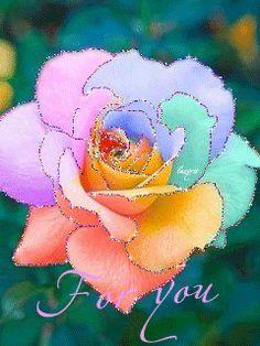 Радужная роза Glitter Flowers, Love Flowers, Beautiful Flowers, Floral Suit Men, Dank Gifs, Glowing Flowers, Beautiful Gif, Happy Colors, Rainbow Colors