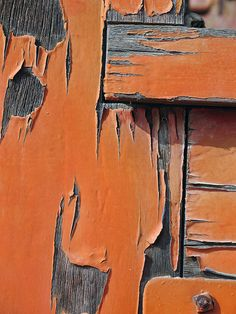 rustic orange and gray