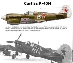 Curtiss P-40MM