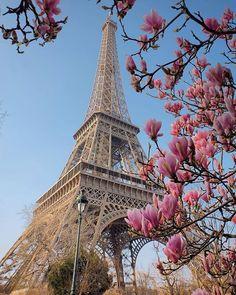 Hotels-live.com/pages/sejours-pas-chers - Follow TopParisPhoto on SnapChat!! . TOP Paris par @reginesemaan #topparisphoto Allez sur la galerie à la une pour partager les likes !! Look at the featured gallery to share the LVE #communityfirst Hotels-live.com via https://www.instagram.com/p/BC5V4ZYsAD2/