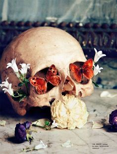 """I've always been drawn to the concept of vanitas, and I love images that combine the reality of death with the beauty of life. vanitas/memento mori """"Witches"""" by Txema Yeste for Numero China April 2012 Memento Mori, Collage Kunst, Flower Skull, Ex Machina, Jolie Photo, Skull And Bones, Skull Art, Dark Art, Still Life"""