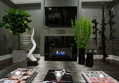 Ventless Fireplace Design Ideas, Pictures, Remodel, and Decor - page 4 Fiddle Leaf Fig, Living Room With Fireplace, Fireplace Design, Plant Decor, House Design, Interior Design, Architecture, Ficus, Basement