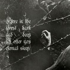 here in the forest dark and deep I offer you eternal sleep.