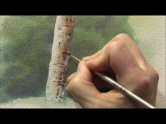 DVD - Trees, Woodlands  Forests in Watercolour with Geoff Kersey