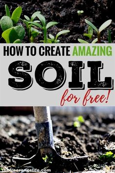 Gardening doesn't have to be expensive. Improve your garden soil with these 8 amendments that are totally free and have your best garden yet! #GardeningTips