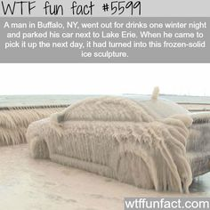 Car turns into a frozen ice sculpture in Buffalo - EXPENSIVE NIGHT!  ~WTF! weird but fun facts