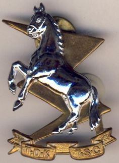 Very Rare, Vintage and Original South African Defense Force Chrome/Brass Badge.