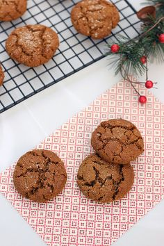 Grain-free Spiced Molasses Cookies {Gluten-free, Dairy-free and Honey Sweetened} // Tasty Yummies