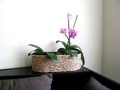 tutorial - Decorating ~ flower pots