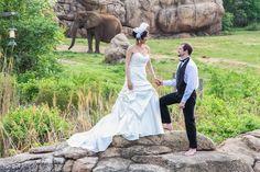 nashville zoo, luxury wedding nashville, outdoor, african themed, safari, wedding 101, #nashvilleweddings
