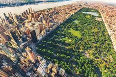 Central Park in New York City Photo Wallpaper. Removable Wall Mural with Realistic Motif. Central Park, Park City, Voyage New York, New York City Photos, Park In New York, Urban Park, Rem Koolhaas, Manhattan New York, World Trade Center