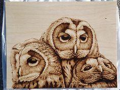 """Midnight Trio"" Three adorable owls burned on birch plywood by Cara Jordan Wood Burning Crafts, Wood Burning Patterns, Wood Burning Art, Mini Paintings, Animal Paintings, Bird Drawings, Animal Drawings, Pyrography Patterns, Pyrography Ideas"