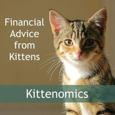 Financially Savvy Kittens on the Definition of Success | Marotta On Money
