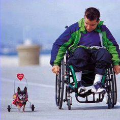 So sweet... Source: Michigan Humane Society Facebook Page