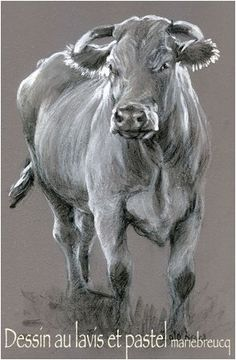 vache dessin Cow Art, Pallet Painting, Wildlife Art, Old Wood, Painting Patterns, Cattle, Painting & Drawing, Mini, Pastel Paintings