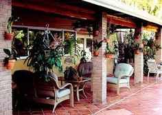Image result for three plants in hanging baskets