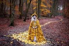 Wonderland 'The Guidance of Stray Souls' by Kirsty Mitchell, via Flickr