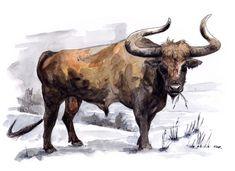 Feldrik Rivat - Aurochs Mountain Monsters, Extinct Animals, Prehistoric Creatures, Strange History, Ice Age, Fauna, Mammals, Illustration, Cool Pictures