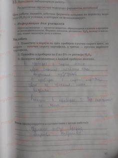 Страница 17 - Биология 9 класс рабочая тетрадь Пасечник, Швецов
