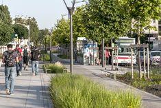 Gautier Conquet | Requalification de l'avenue Mermoz – Suppression de l'autopont A43