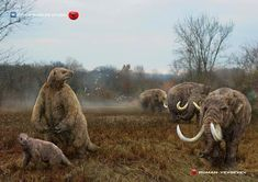 Other worlds studio Prehistoric World, Prehistoric Creatures, Extinct Animals, Wildlife Art, Geology, Mammals, North America, Elephant, Studio