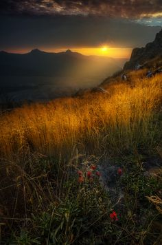 Mount Saint Helens National Park by Carlos Roj*