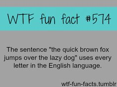 """wtf-fun-facts: """" MORE OF WTF-FUN-FACTS are coming HERE funny and weird facts ONLY """""""
