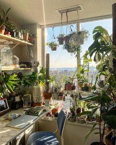 Room Ideas Bedroom, Bedroom Decor, Study Room Decor, Decor Room, Room With Plants, Plant Rooms, Indie Room, Pretty Room, Aesthetic Room Decor