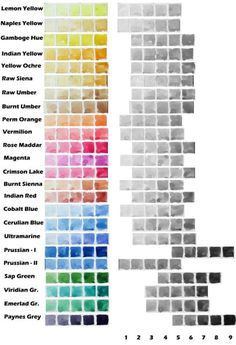 Value scale of different watercolor paints of camlin artist tubes. To your left is color as a 'tea' mixture and then going right the pigment...