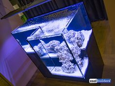 drop-aff-tank-aquarium-ifalos-1