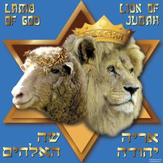 """""""The Triumph of the Suffering Servant"""" An Exposition of Isaiah Judah And The Lion, Lion And Lamb, Tribe Of Judah, Suffering Servant, Feasts Of The Lord, Christian Facebook Cover, Feast Of Tabernacles, Biblical Hebrew, Rejoice And Be Glad"""