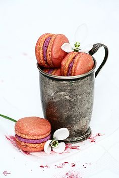 Blueberry and Mascarpone Macarons Beetroot Powder, Macs, Sweet Desserts, Sweet Recipes, Dessert Recipes, Chocolate Cupcakes Filled, Macaron Recipe, French Macaroons, Sweet Life
