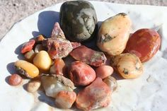 How to cut Agates & Rockhounding for Arizona Fire Agate. Crystals And Gemstones, Stones And Crystals, Gem Hunt, Rock Tumbling, Rock Hunting, Cool Rocks, Rock Collection, Mineral Stone, Rocks And Gems